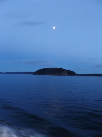 Ferry ride in the moonlight